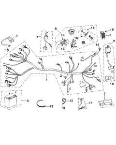 Sinnis Phoenix 50 (C23) Electrical