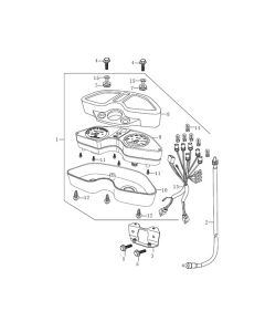 Sinnis Apache 125 (Non-EFI) (C15) Speedometer