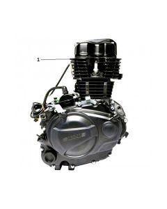 Z157FMJ-2 (Z12) Engine - Complete